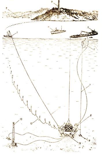 Схема постановки подводного дома 'Преконтинент III' С помощью скользящего захвата дом был зацеплен за направляющий трос натянутый между дном и поверхностью, и ориентировался относительно него с помощью нейлоновой оттяжки с 'Физалии'. Скорость спуска регулировалась с баржи лебедкой. Ход операции контролировался экипажем Ныряющего блюдца, соединенного телефонной линией с поверхностью Оборудование подводной нефтяной скважины было спущено на дно несколько позже. Снабжение дома, установленного на дне электроэнергией и обмен информацией с поверхностью производился по подвешенному на буях кабелю, соединявшему дом со зданием маяка на мысе Феррат - 'Физалия'; 2 - Вилльфранш; 3 - маяк на мысе Феррат; 4 - 'Эспадон'; 5 - 'Лэбор'; 6 - буй; 7 - направляющий трос; 8 - Ныряющее блюдце; 9 - якорь; 10 - подводный дом 'Преконтинент III'; 11 - нейлоновая оттяжка с 'Физалии'; 12 - кабели подачи электроэнергии и связи; 13 - вышка подводной нефтяной скважины